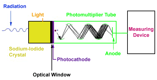 Scintillation Detector - Radiation, Light > Sodium-Iodide Crystal > Optical Window > Photocathode > Photomultiplier Tube > Anode > Measuring Device
